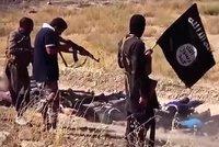 """Sebevražda, nebo boj?"" Sousedé Česka zajistili náborové dotazníky ISIS"