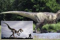 Ve Španělsku byl objeven nový druh dinosaura. Měl na hřbetě záhadný vějíř