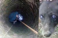 Slepý pejsek měsíce trpěl ve studni: Přežil jen díky dětem, které mu házely jídlo