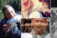 Bizarní americké zákony: Co si nesmíte dovolit ke zvířatům?