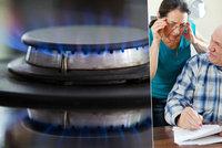 Odkryli jsme sprosté marže dodavatelů plynu: Čtenáři Blesku: Díky, že nám otvíráte oči!
