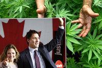 Legalizací marihuany si Kanada přijde na miliardy dolarů