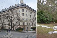 Tragédie v Brně: Vrah studentku za bílého dne ubodal. Parkem si prý chtěla zkrátit cestu na vlak