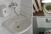 Zápach, chybějící papír nebo mýdlo: Průzkum záchodů pražských nemocnic