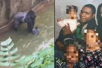 Smrt goriláka Harambeho: Rodiče vyšetřuje policie! Jejich nepozornost stála primáta život