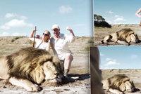 Z lovce štvanou zvěří! Pár pózoval se zastřeleným lvem, zaútočila na ně jiná šelma