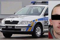 Policisté chytili nebezpečného schizofrenika: Čekal na ně v trávě u silnice
