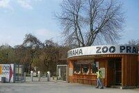 Zoo na polovině kapacity: Za zvířaty může až 10 tisíc lidí, dorazily zatím stovky