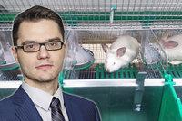 """Český europoslanec """"zklamal"""": Ani 600 tisíc podpisů nedostalo králíky z klecí"""