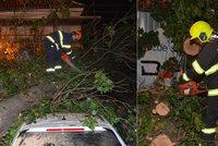 Ze zahrady Werichovy vily spadl na luxusní auto strom. Odstraňovali ho 4 hodiny