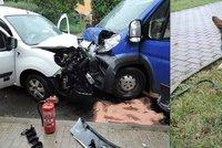 Nehoda aut v České Lípě: Hasiči museli poskytnout první pomoc psovi
