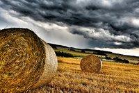 Na jihu Česka hrozí bouřky a bude mlha i déšť. Sledujte počasí na radaru