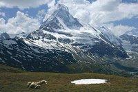 Češka spadla do trhliny na nejvyšší hoře Rakouska, zraněná skončila v nemocnici