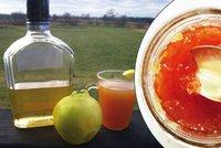 Zapomenutá potravina našich babiček: Uvařte si marmeládu z kdoulí