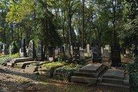 Politici adoptují hroby: Válková si vybrala Řezáče, Marksová vězněnou političku