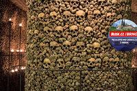Nejtajemnější místo Brna: 50 tisíc obětí moru, cholery a válek – 500 let staré kosti ležely jen dva metry pod zemí