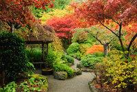 e12ca464e8a Fotogalerie  Nejkrásnější podzimní zahrady. Inspirujte se jimi i vy