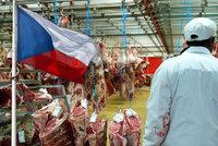 Práci u nás najde 40 tisíc lidí, míní zemědělci. Problémem je maso z Německa