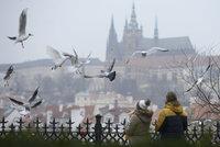 Mlha, sníh a mrholení: Česko má ve spárech podzimní počasí, zlepšení nepřijde ani o víkendu