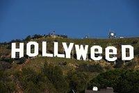Vyhulený silvestrovský kousek: Vtipálek změnil slavný nápis Hollywood na Hollyweed!