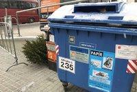 Kam s vánočním stromkem? Dejte ho k popelnicím na tříděný odpad, prosí magistrát