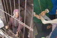 Týranou prababičku (92) drželi roky ve zvířecí kleci, věznili ji syn a snacha