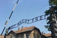 Vozme uprchlíky do koncentráků, navrhují Židé. Pomůže jim to prý v integraci