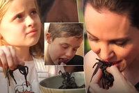 Šokující pochoutky Angeliny Jolie: Smaží dětem škorpiony a tarantule!