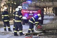 Vítr pustoší Česko: Zlámané stromy padají na auta, na horách je nebezpečno