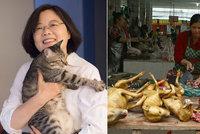 Tchaj-wan zakáže pojídání psů a koček. Řezníky čeká vězení a zostuzení