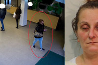 Vydávala se za uklízečku. Žena (48) ukradla věci za 800 tisíc