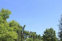 Základem je čistota a klid: Kempy v Praze se připravují na hlavní letní sezonu