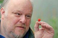 """Zahradník vypiplal """"Dračí dech"""". Nejpálivější paprička světa dokáže zabíjet"""