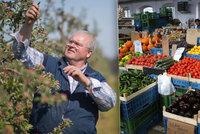 Meruňky i brambory kosil mráz. Jak moc letos zdraží ovoce a zelenina?
