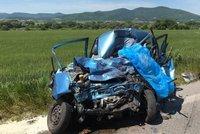 Řidička (†57) nepřežila čelní srážku s českým kamionem: Zemřela na místě