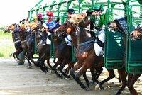 Vsaďte si na (mimořádně) sobotní dostihy ve Velké Chuchli: Koňské superstar v boji o milion korun!