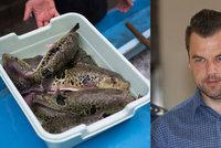 Zabil Moniku a Klárku jed ryby fugu? Někdo ho dal Kramným do pití, tvrdí expert