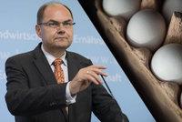 Skandál s nebezpečnými vejci: Česko spustilo kontroly, podle Němců budou na trhu chybět