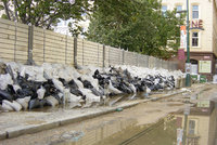 Policejní razie v Povodí Vltavy a Povodí Moravy: Šlo o protipovodňová opatření