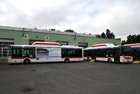 """Praha přidá na platy řidičům PID zhruba 40 milionů. Dopravní podnik """"ostrouhá"""""""