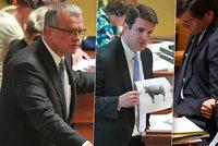 """Kalouskova kolonoskopie, """"fňukny"""" i kráva na obrázku: Poslanci se zhádali o Babišovo vydání"""