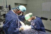 Nemocnice na Bulovce nakoupila léky a implantáty za 800 milionů bez výběrového řízení, ukázal audit
