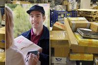 Hrozí zpoždění dárků, přepravcům chybí lidé. Do kdy objednávat zboží před Vánoci?