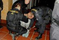 Mladá recidivistka přepadla hernu v Přerově: Na obsluhu vytáhla nůž!