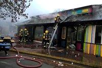 Smutek v londýnské zoo: Požár zabil samici hrabáče, surikaty tu pohřešují