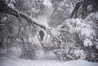 Sněžná bouře nad Moskvou: Jeden člověk zemřel, problémy mají i lety do Česka