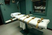 Tennessee po devíti letech popravila vězně: Smrtící injekci dostal za znásilnění a vraždu sedmileté dívky