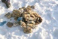 Sníh skrýval pytel s hrozivým obsahem: 54 useknutých rukou. Komu patřily?