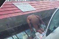 Záhadné zamrznutí nahatého muže: Bez oblečení stál na autě jako socha