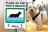 Psí bary i lavičky: V dovolenkových rájích přibývá pláží pro chlupáče